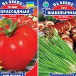 Бизнес на дачном участке: топ-4 лучших семян овощных культур для выращивания на продажу