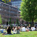 Образование в Нидерландах